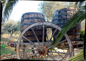 wine tasting tours and holidays puglia salento Italy