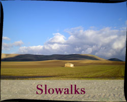 Slowalks